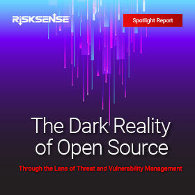 risksense-open-source-spotlight-report