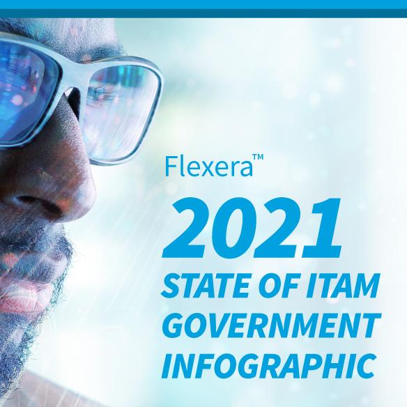 Flexera Infographic sidebar