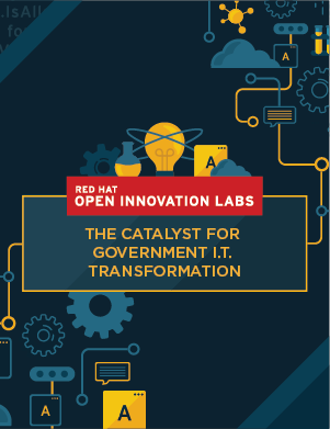 Open Innovation Labs Government E-Book preview