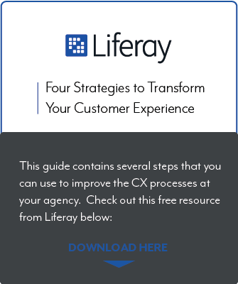 Liferay Customer Experience Guide preview