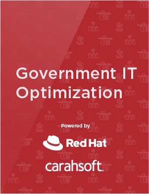 Goverment IT Optimization Infographic preview