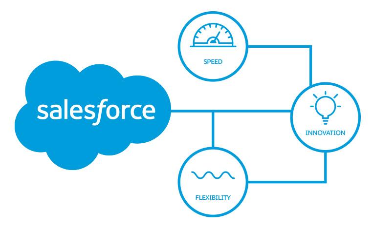 Salesforce cloud graphic