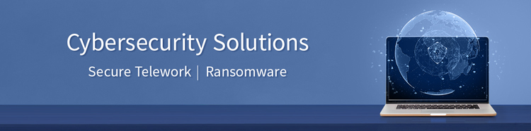 Cybersecurity-Solutions-SecureTelework-Ransomware