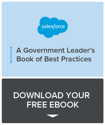 Government Best Practices eBook preview