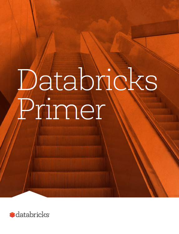 snap_shot_-_databricks_primer.png