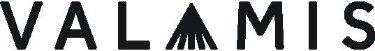 valamis-logo_1.jpg