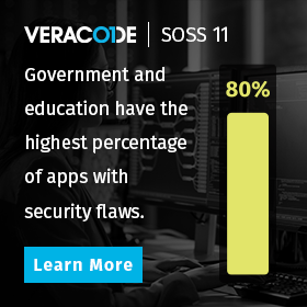 The State of Software Security: Government and Education