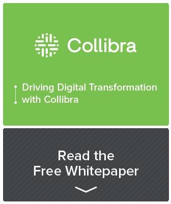 Resource callout - Collibra whitepaper