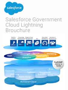 Salesforce Government Cloud Brochure