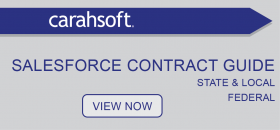 Salesforce government contract guide